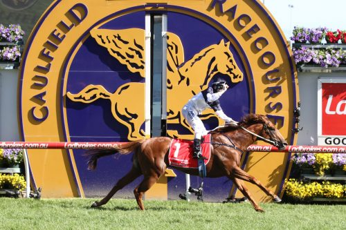 Bell River Thoroughbreds